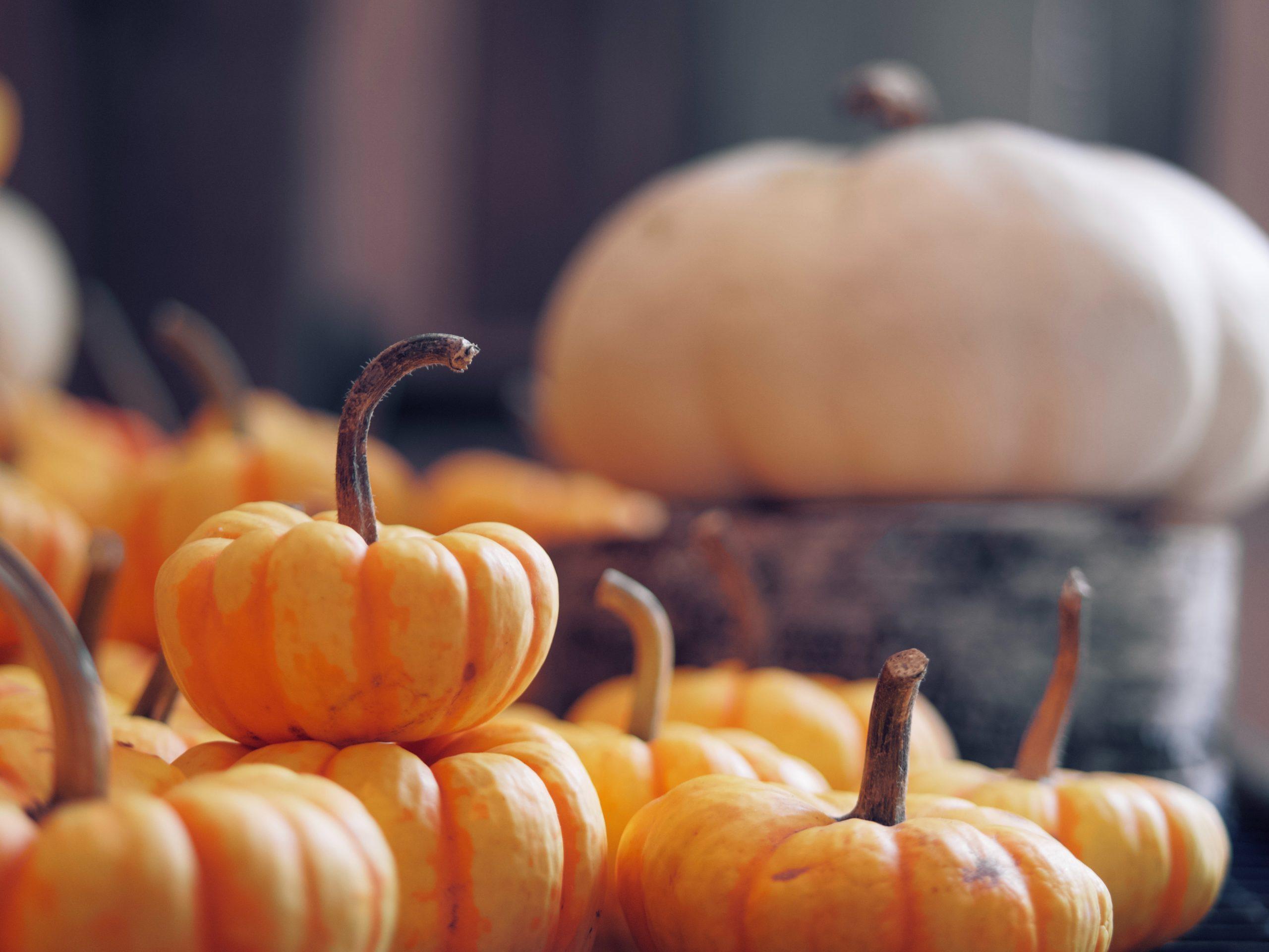 Andrésy Origines - confitures hôtellerie prestige -confitures équilibrées en fruits et sucres, fruits sélectionnés pour leurs origines et variétés, fabriquées en France, cuites en chaudron de cuivre et au sucre de canne
